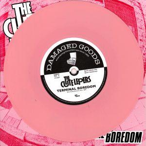 DG310-Pink