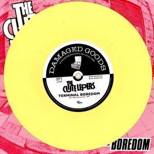DG310-Yellow